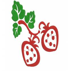 Strawberry Embroidery Design 2